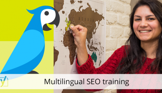 Why Take An Search engine optimization Training Program?